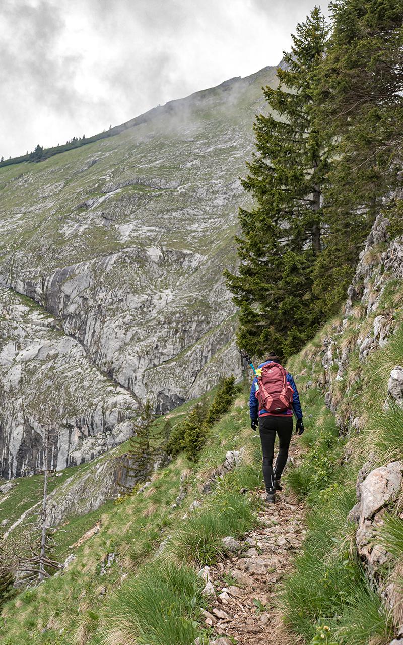 Purtschellersteig-Aufstieg-Weg