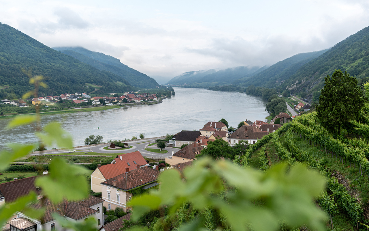 Spitz-Blick-auf-die-Donau